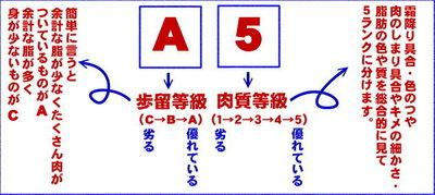 0306b.jpg